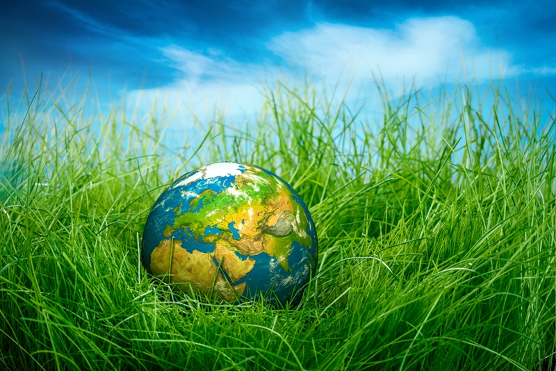 With global warming gradually becoming a larger issue, environmental preservation is on a lot of people's minds.